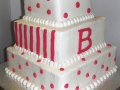 Tiered Square Cake