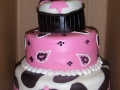 Western Tiered Cake